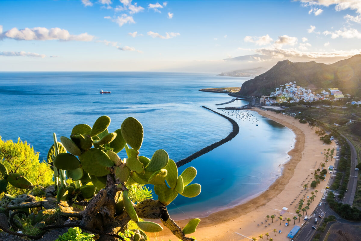 Canary Islands has been confirmed as the latest member of INSTO