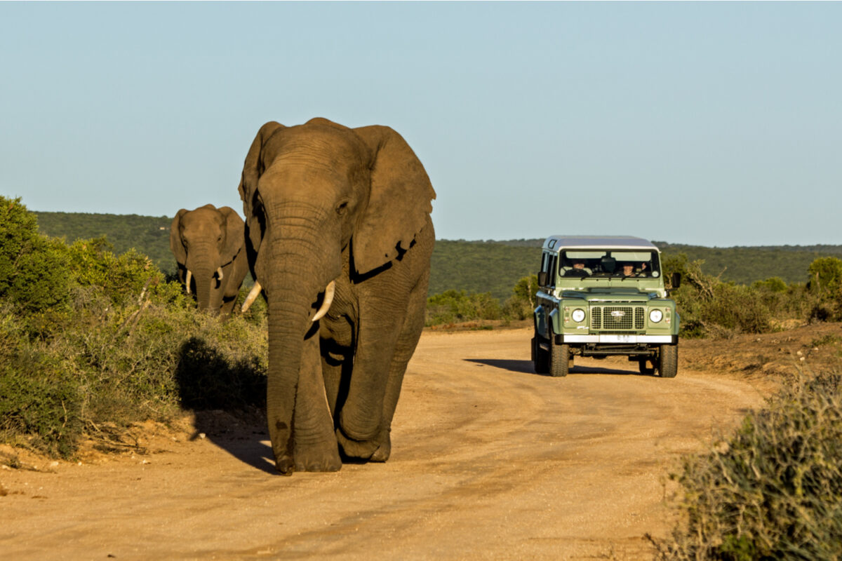 Nine weeks, nine provinces: South African Tourism gears up for roadshow from 2 December