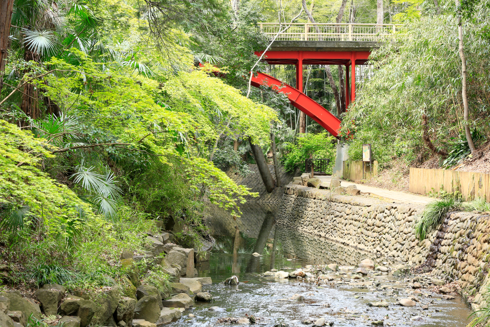 Three tranquil spots in Tokyo to rest your mind